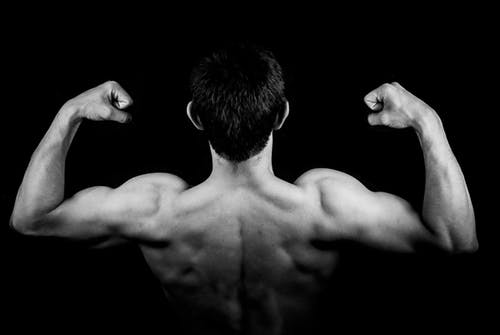 How to Increase Your Muscle Size - Muscle Growth Part 1